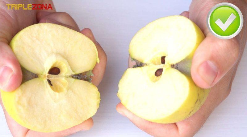 Se puede partir una manzana con las dos manos